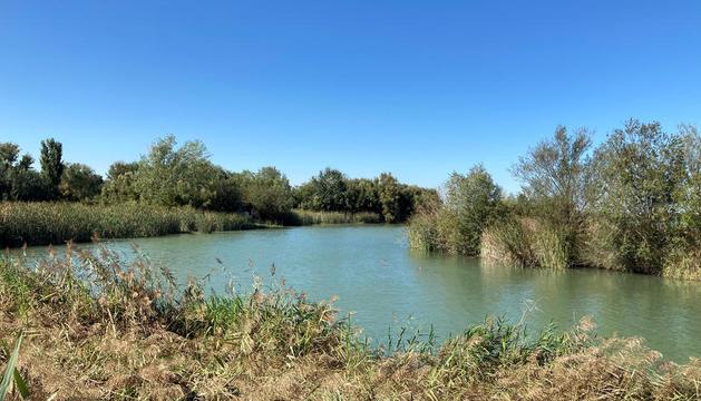 L'estany d'Ivars i Vila-sana es buidarà parcialment