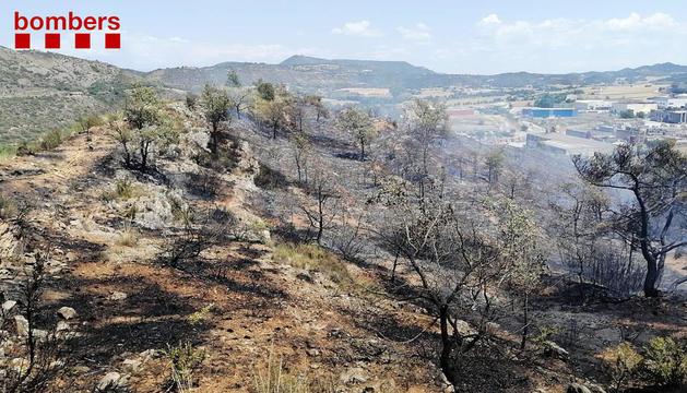 Imagen del fuego de ayer en Artesa de Segre, en el que trabajaron una decena de medios.