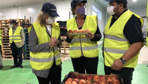 La consellera Jordà va visitar ahir les instal·lacions de l'empresa fructícola Baró i Fills, a Albatàrrec.