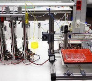 Científics espanyols dissenyen una bioimpressora 3D de pell humana