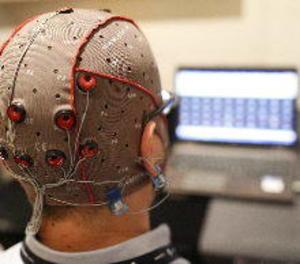 Descobreixen la zona del cervell que genera les decisions en funció de la memòria