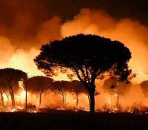 Més de 2.000 desallotjats en l'incendi de Huelva, que ha entrat a Doñana