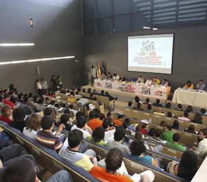 Una reunió del Consell de la Joventut.