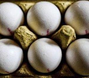 Bèlgica i Holanda inicien investigacions judicials per ous contaminats