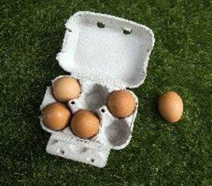La crisi dels ous amb fipronil evidencia les esquerdes del control alimentari a la UE