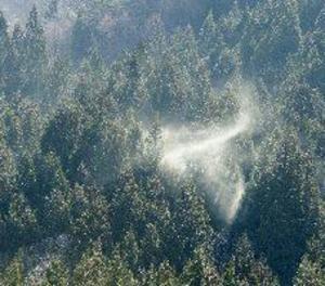 Els al·lèrgics al pol·len patiran més aquesta primavera