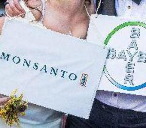 Bayer preveu tancar ben aviat l'adquisició de Monsanto després de l'autorització dels EUA