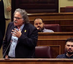 El diputat d'ERC Joan Tardà.