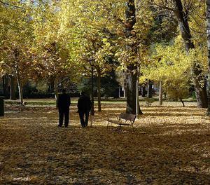Dos ancians passegen per un parc.