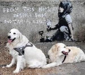 Apareix un possible grafiti de Banksy després de la protesta ecologista a Londres