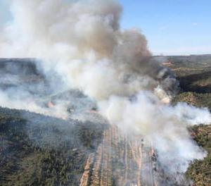 Imatge de l'incendi del juny a Maials