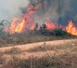 Un dels incendis que cremen l'Amazònia brasilera.