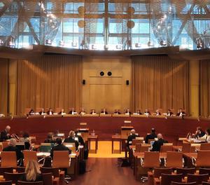 El Tribunal de Justicia de la Unión Europea.
