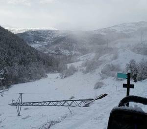 Una torre caiguda a la zona de la vall de la Vansa a causa del temporal de neu i vent.