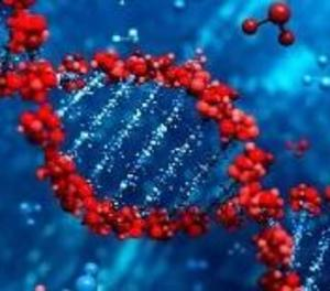 Estudiaran genèticament per què alguns pacients joves desenvolupen formes molt greus de la Covid-19