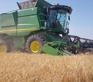 El sector dels cereals és un dels inclosos en els ajuts directes de la PAC.