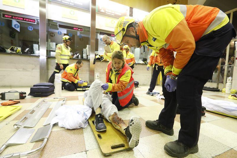 L'estació de Lleida-Pirineus i el túnel d'accés a aquesta van ser l'escenari a última hora d'ahir dimecres d'un simulacre d'accident organitzat per Adif i Protecció Civil.