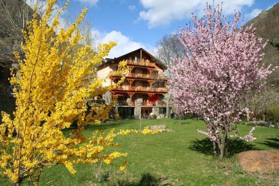 Arbres florits, camps verds i bon temps...arriba la primavera!