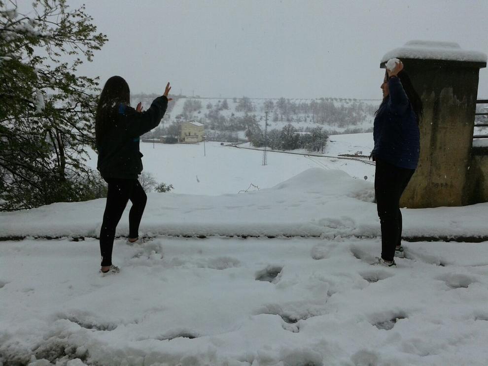 Comarques de Lleida blanquejades per la neu al mes de març