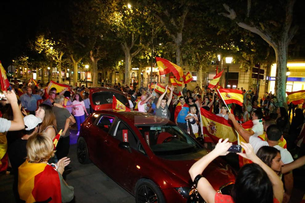 Manifestació a favor de la unitat dEspanya a la subdelegació