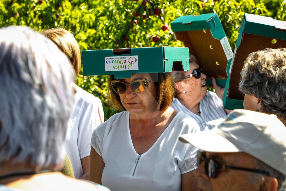 Campanya de turisme a Aitona en què els turistes poden collir fruita i conèixer el cicle de producció. Visites a 12 euros.