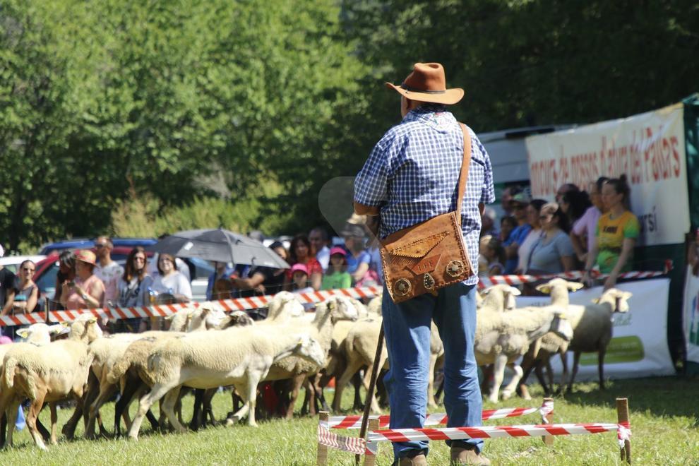 Más de 1.200 personas se reunieron en los prados de la Coma de Llavorsí