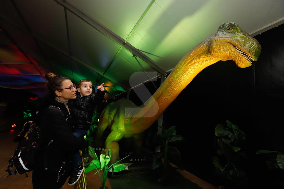 Imatges de l'exposició 'Dinosaurs Tour' a Lleida