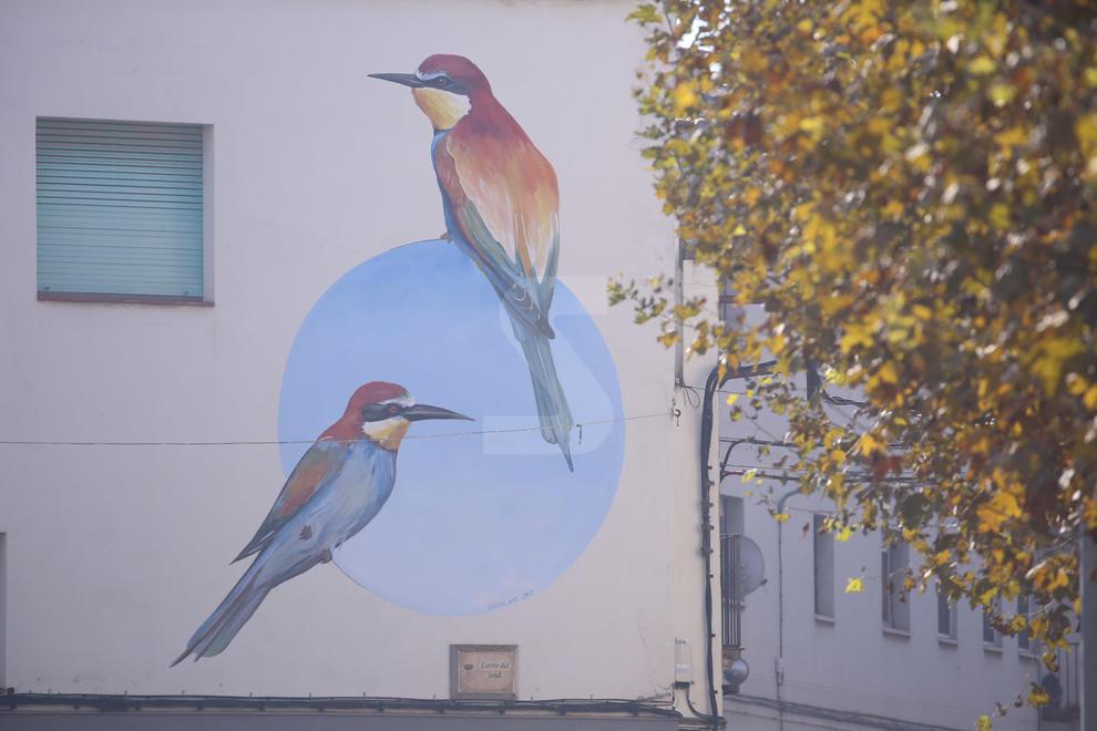 Ivars d'Urgell converteix les aus de l'estany en art urbà. Projecte de divulgació de Swen Schmitz i el consistori