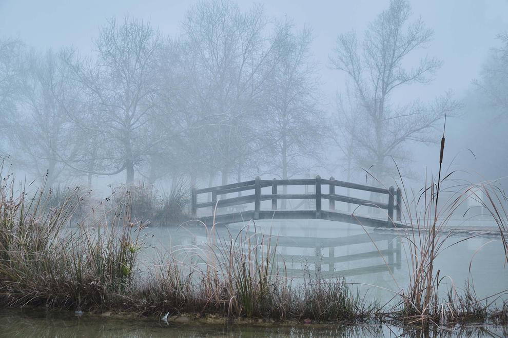 El fred, la boira i la neu... l'hivern ja és aquí!
