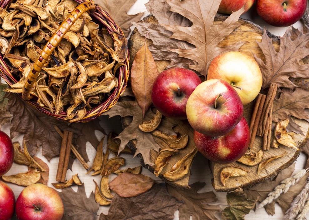 La boira, les fulles que cauen, els seus fruits... la tardor és una estació molt fotogènica.